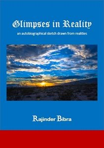 Book Cover: Glimpses in Reality